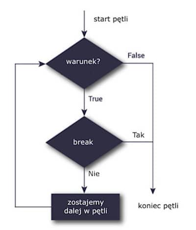 python break interrupt cycle